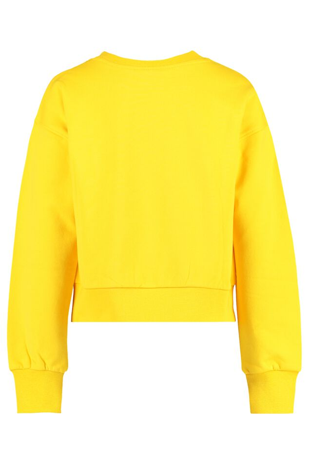 Sweater SIA CG