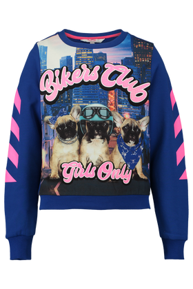 Sweater Dromy