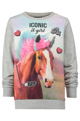 Sweater Dhorse